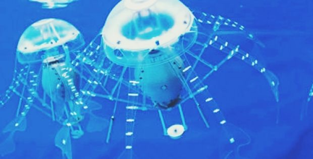 scientists develop robotic jellyfishm
